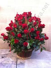 Rams de roses i roses per regalar