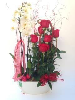 Centre Orquidea i roses