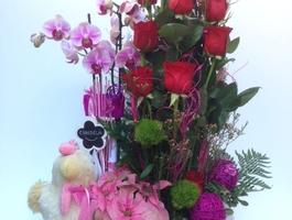 Orquidea, roses amb nino